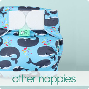 Other Nappies