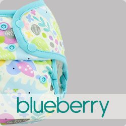 Blueberry Nappies