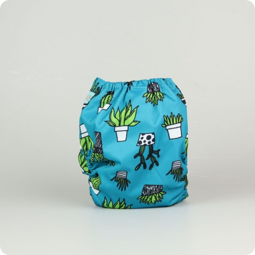 Alva Baby One Size Nappy - Succulents