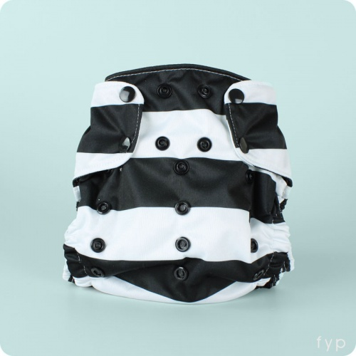 Smart Bottoms Smart Nappy Cover